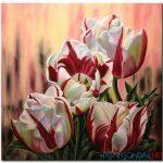 Những Cánh Hoa Khoe Sắc M1325