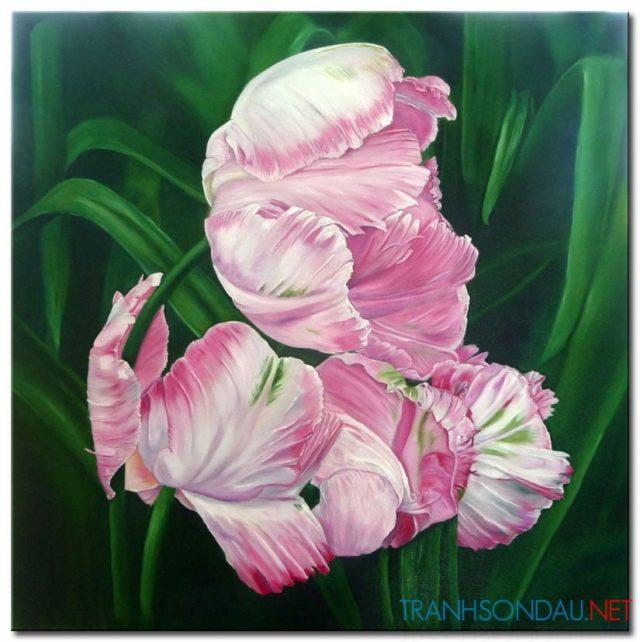Tulip Khoe Sắc M1335