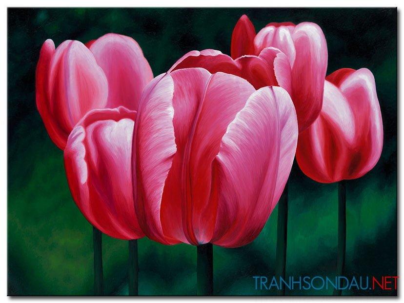 Những Cánh Hoa Tulip M1340