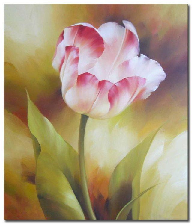 Những Cánh Hoa Tulip M1347