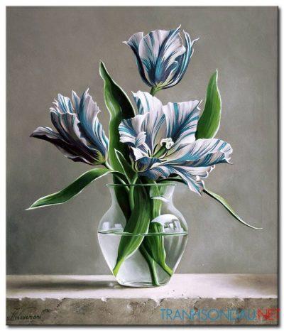 Những Cánh Hoa Tulip M1349