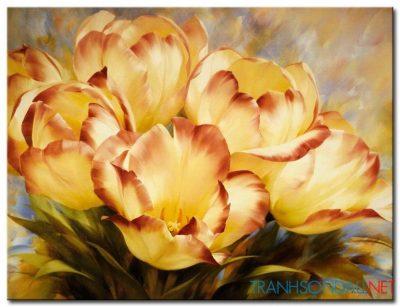 Những Cánh Hoa Tulip M1352