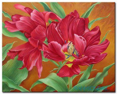 Những Cánh Hoa Tulip M1362
