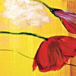 hoa poppy m2213-1