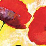 hoa poppy m2213-2