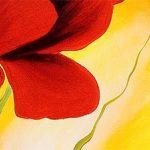 hoa poppy m2214-1