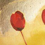 hoa poppy m2220-2