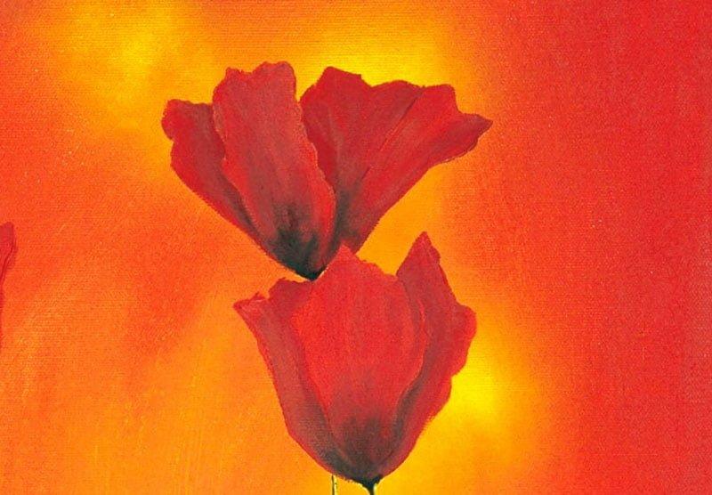 hoa poppy m2230-2