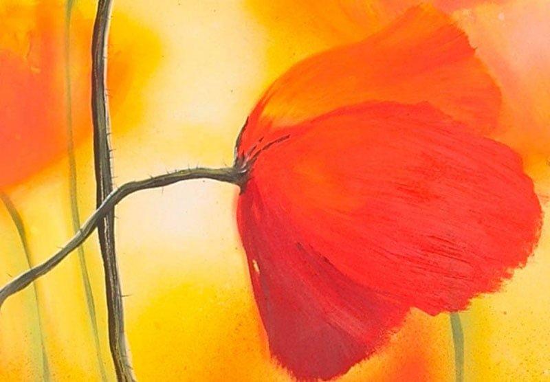 hoa poppy m2231-1