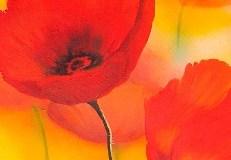 hoa poppy m2231-2
