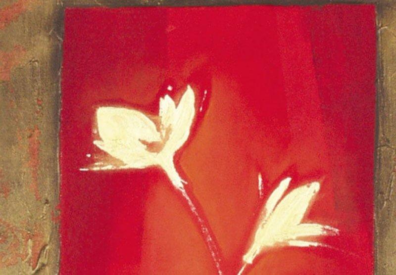 hoa poppy m2233-2