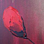 hoa poppy m2234-2