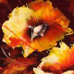 hoa poppy m2239-2