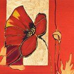 hoa poppy m2244-2