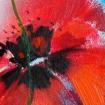 hoa poppy m2245-1
