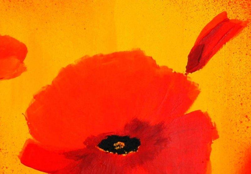 hoa poppy m2250-1