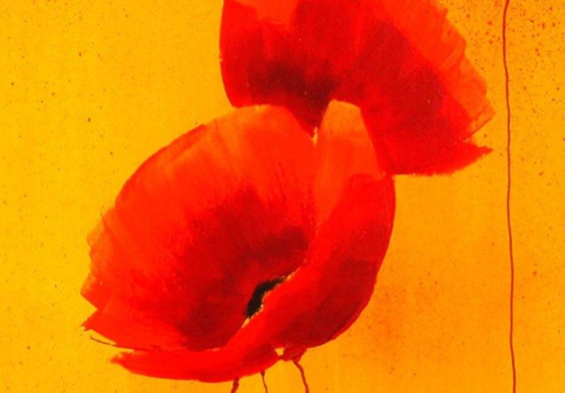 hoa poppy m2250-2