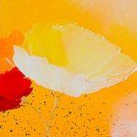 hoa poppy m2257-2