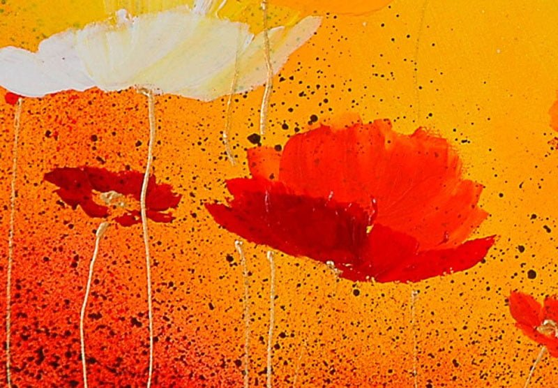 hoa poppy m2258-1