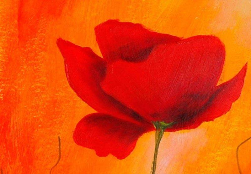 hoa poppy m2264-2