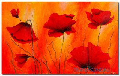 Poppy Khoe Sắc M2264