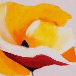 hoa poppy m2267-1