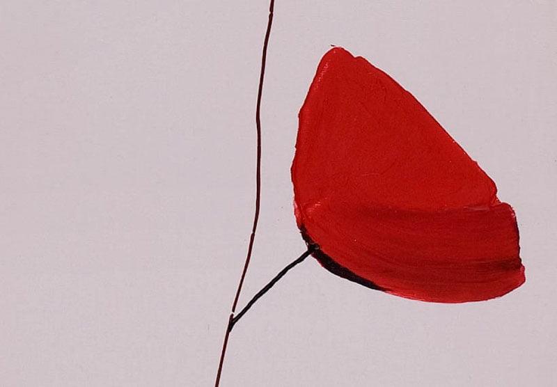 hoa poppy m2267-2