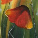 hoa poppy m2270-1