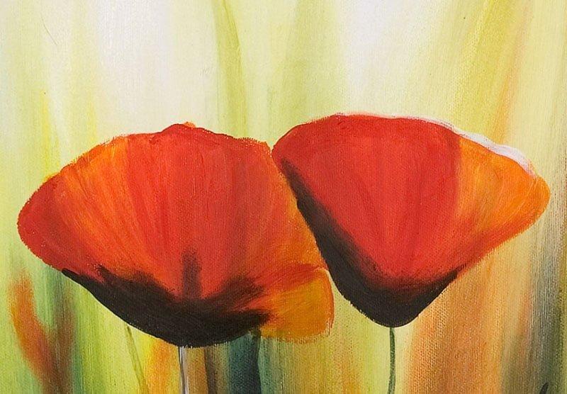 hoa poppy m2270-2