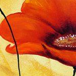 hoa poppy m2281-2