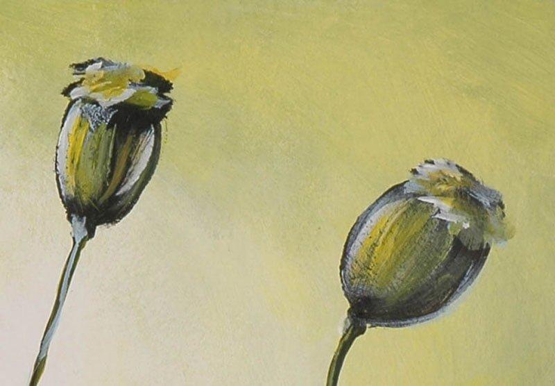 hoa poppy m2289-1