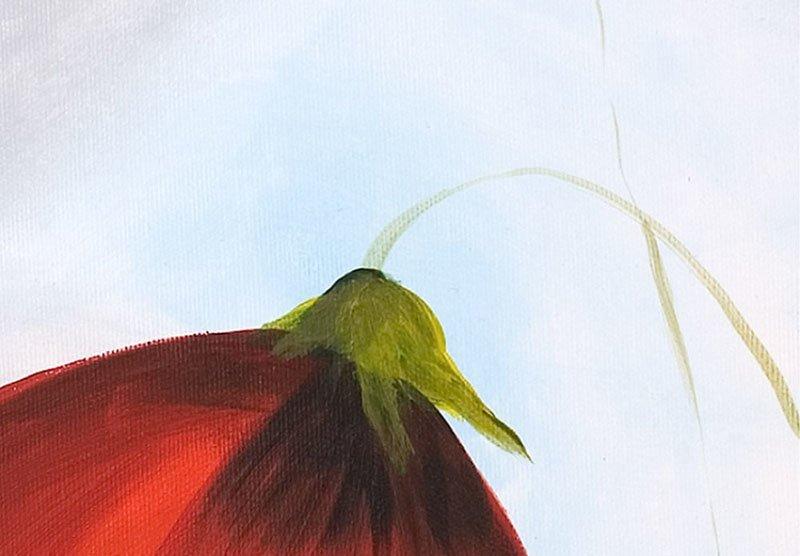 hoa poppy m2300-1