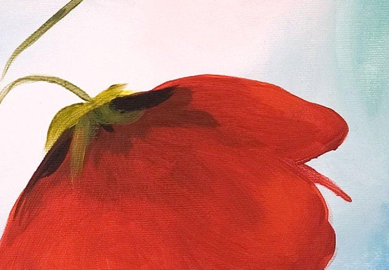 hoa poppy m2300-2
