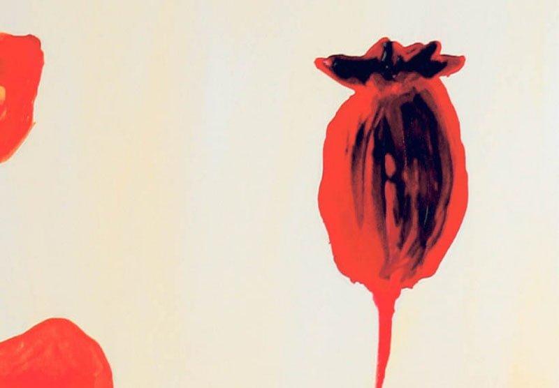 hoa poppy m2301-1