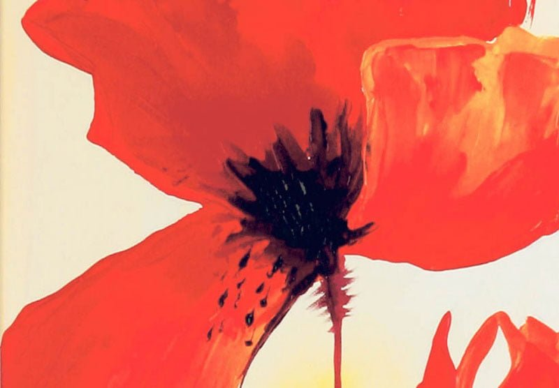 hoa poppy m2301-2