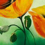 hoa poppy m2303-1