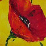 hoa poppy m2304-1