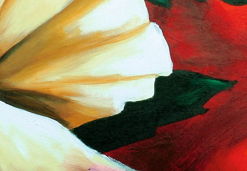 hoa poppy m2305-1