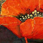 hoa poppy m2306-2