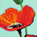 hoa poppy m2309-1