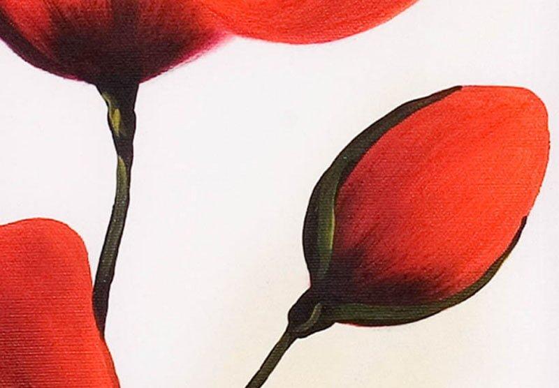hoa poppy m2311-1