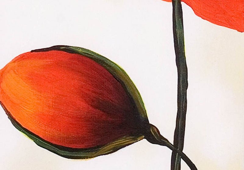hoa poppy m2311-2