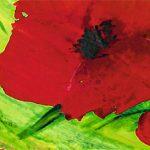 hoa poppy m2313-1