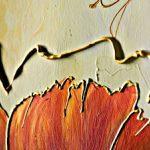 hoa poppy m2316-2