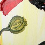 hoa poppy m2326-1