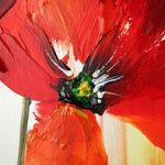 hoa poppy m2326-2