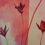 hoa poppy m2330-2