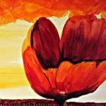 hoa poppy m2331-1