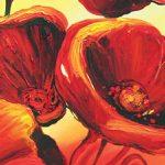 hoa poppy m2336-2