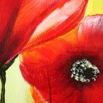 hoa poppy m2337-2